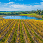 We-Make-and-Install-Surface-Aerators-in-Ponds-for-Wineries