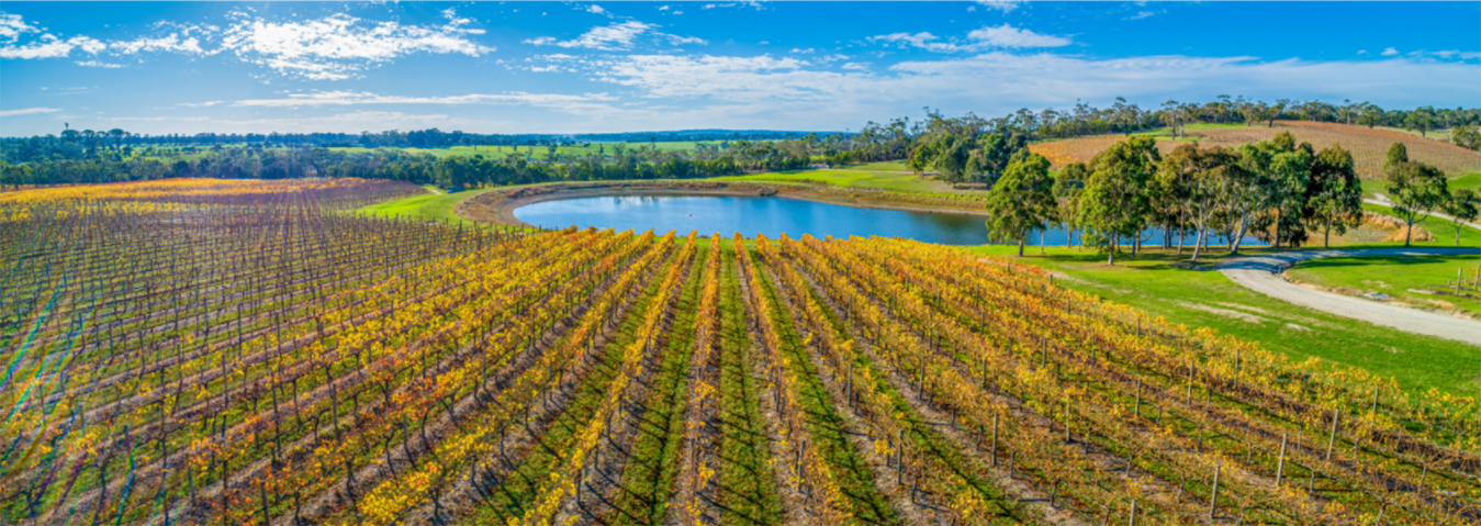 We manufacture and install Surface Aerators in Ponds for Wineries